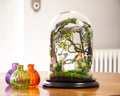 Terrarium forests of artificial plants, Curiosity cabinet, glass bell dome, Wedding anniversary gift, garden lounge decoration