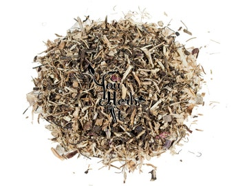 Echinacea  Root Coneflower - Echinacea Purpurea