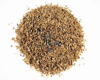 Elderflower Elder Flowers - Sambucus Nigra