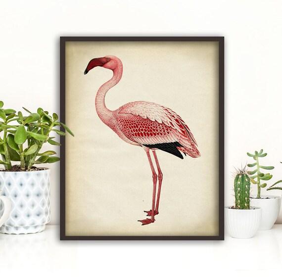 Rosa poster stampa stampa fenicottero flamingo dormitorio  020364b219e0