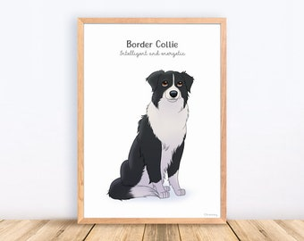 Border Collie, Dog Breeds, Print, Illustration, Adorable, Wall Art, Puppy, Poster