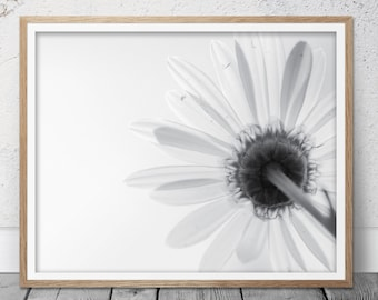 Flower photography, White flower, Flower print, Flower art, Flower photo, Home decor, Black and White print, Nature Photography, Nature, 55