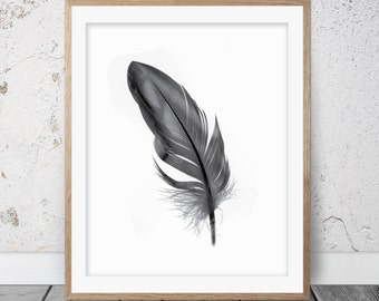 Feather print, Black feathers, Feather art, Feather poster, Feather wall art, Bohemian decor, Instant download, Feathers print, 060