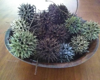 SWEET GUM Balls*Natural Decor*Nature Decor and Seed Pods*Liquid Amber Tree Pods*Sweet Gum Balls Seed Pods for Decor Floral Crafts & Wreaths.