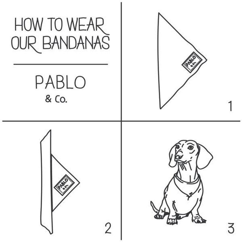 Clueless Cher Dog Bandana Tie On Bandana Dog Accessories