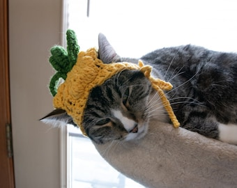 PINEAPPLE hat  FREE SHIP* Furbaby Hat Cat/small Dog pet costume, pet play, adorable pet hats, cat hat* *