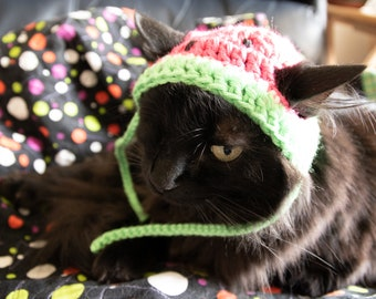 WATERMELON hat  FREE SHIP* Watermelon Furbaby Hat* Cat/small Dog pet costume, pet play, adorable pet hats. cat hat Free Ship . *
