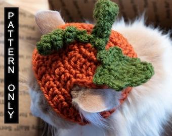 PATTERN ONLY  CROCHET Pumpkin Furbaby Hat  Cat/small Dog beginner level, downloadable, pet costume, pet play, adorable pet hats, cat hat *