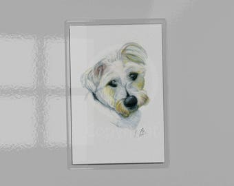 Jack Russell Magnet 9.5cm x 6.5cm, print of watercolour pencil drawing, Jack Russell dog lovers, Jack Russell artwork