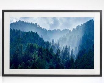 Forest Wall Art Print, Nature Prints, Cloud Photography, Landscape Photography, Forest Photography, Forest Printable Art , Trees Photo
