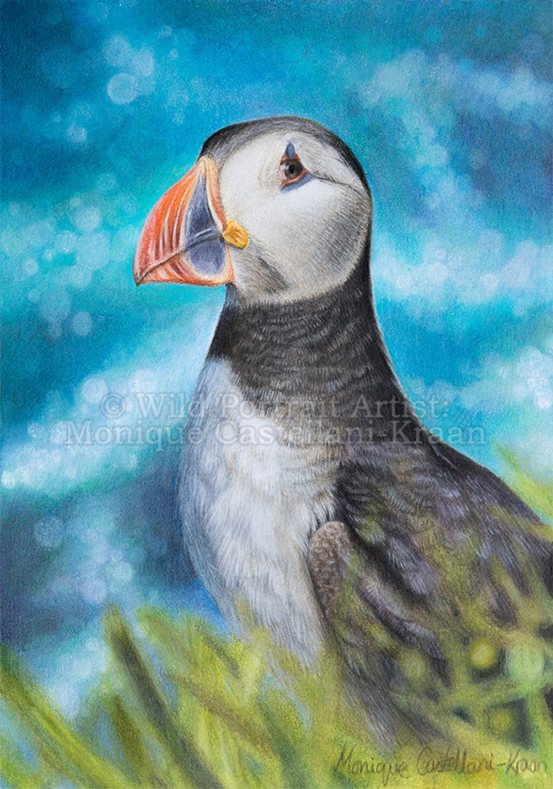 The Cliff Sentry  Original framed painting of a puffin in image 0