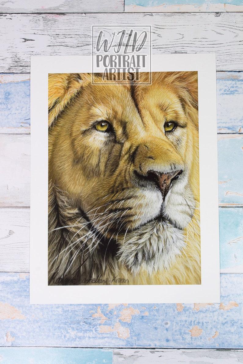 Giclée Art Print Proud A4 Size Soft Pastel Drawing By Wild Portrait Artist Wildlife Realistic Male Lion Painting Closeup Portrait