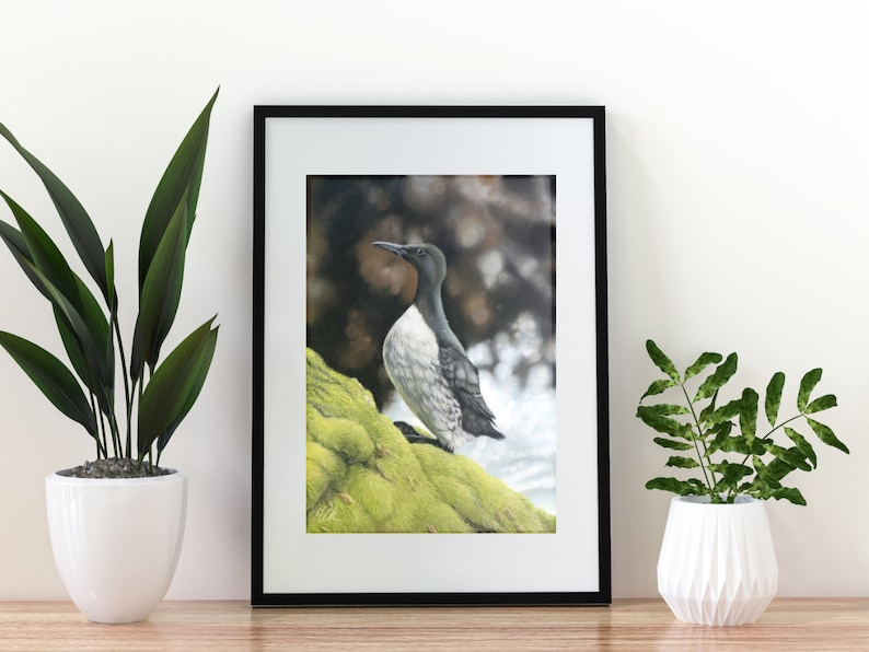 Giclée Art Print 'Respite on the Rocks' A4 size soft image 0