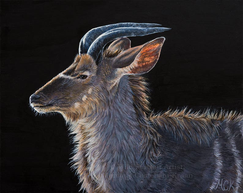 Greater Kudu Portrait  original painting in acrylics framed image 0