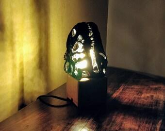 Dinosaur Fossil/Skull Lamp