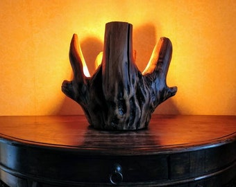 Rosewood Trunk Accent Lamp