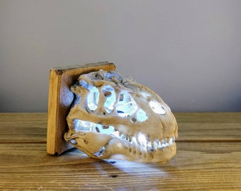 T-REX Fossil/Skull LED Night Light