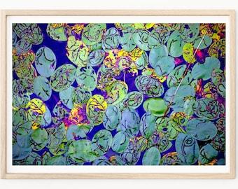 Lily Pad Art - Abstract Wall Art, Lily Pad Photography, Abstract Wall Art, Abstract Art, Lily Pads, Nature Photography, Abstract Photography