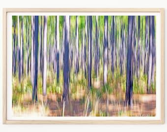 Abstract Photography - Abstract Art Print, Abstract Wall Art, Pine Trees, Abstract Photos, Abstract Decor, Tree Wall Art, Nature Prints