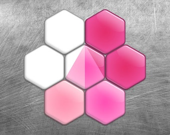 ROSE IN SNOW Set of 7 Hexagon Fridge Magnets // Glossy Color Collection of Pink and White Gift Designs // Refrigerator Magnets
