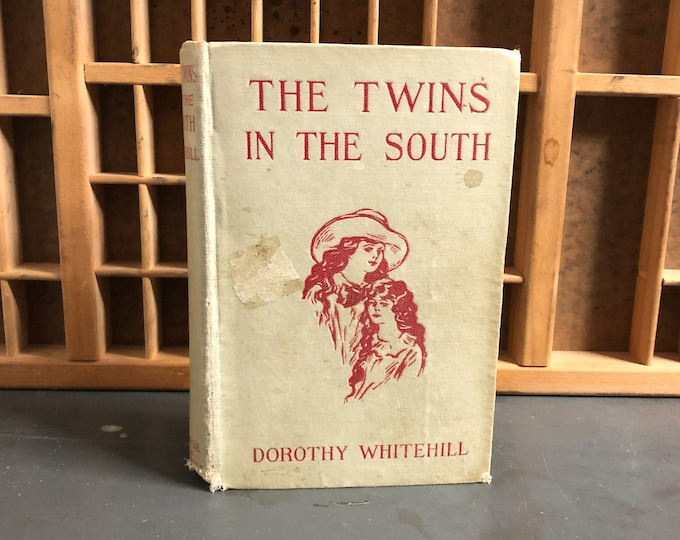 The Twins in the South by Dorothy Whitehill Hardcover Book (1920)