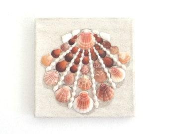 Seashell in Seashell Mosaic on White Sand, 3D Seashell Wall Art Nautical Decor, Ocean Art, Beach House Decor, Pink Seashell Natural Wall Art