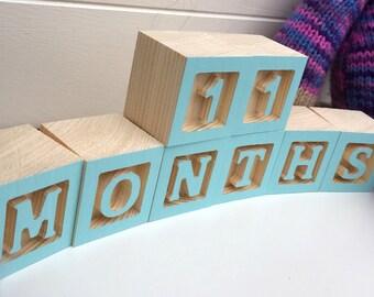 Baby Milestone Block Set
