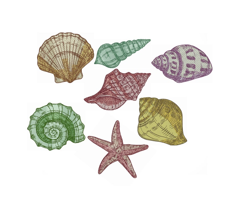 sea embroidery Instant Download, shell set Shells embroidery machine embroidery design sea shells