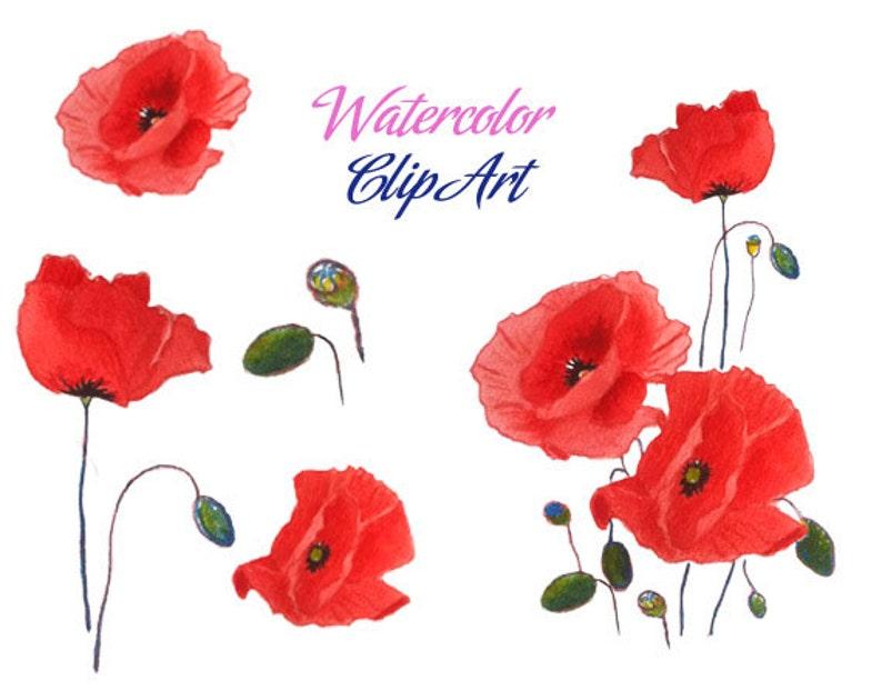 Poppy Clip Art Watercolor Poppies Veterans Day Clip Art Etsy