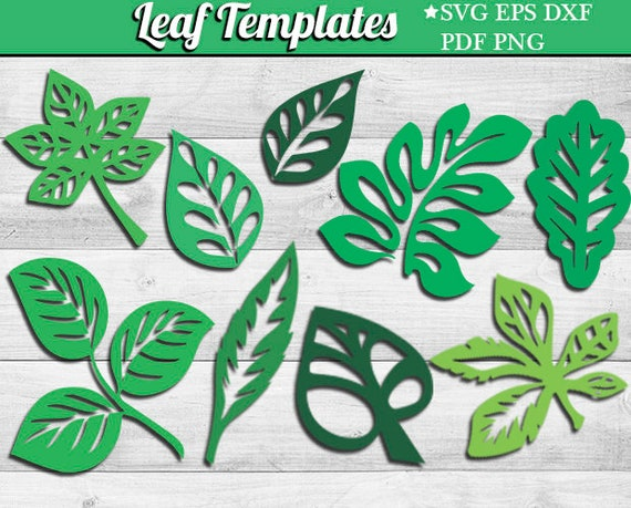 leaf svg template eps dxf tropical leaves silhouette leaf etsy