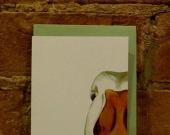 Jeremy Duck note card