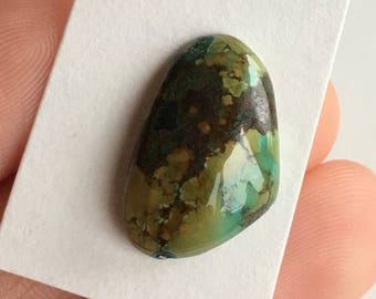Tibetan Turquoise Old Stock Collector's Piece Freeform Cabochon