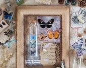 Butterfly Specimen Clear Stickers Pack, Die-Cut Monarch Butterfly Stickers, Planner, Bullet Journal Stickers