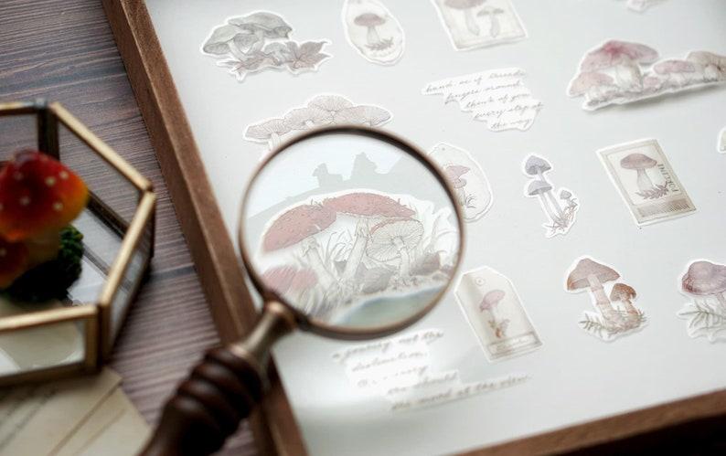 Mushroom Specimen Washi Tape Fungi Botanical Illustration Washi Tape Mushroom Stamps Washi Tape Roll