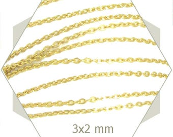fine chain convict 1 m Gold 2 x 3 mm indestructible CHD15
