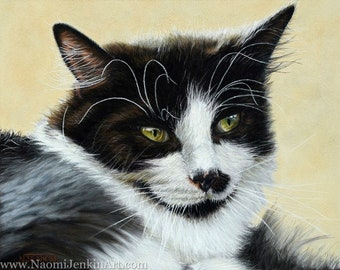 Cat portrait - pet portrait hand drawn in pastels