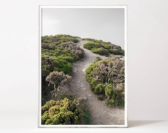 Road Print Nature Printable Wall Art Home Decor Above Bed Art Office Wall Art Prints Nature Photography Ireland Print Forest Path Poster