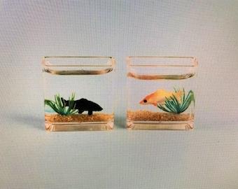 1 Adorable Mini Aquarium