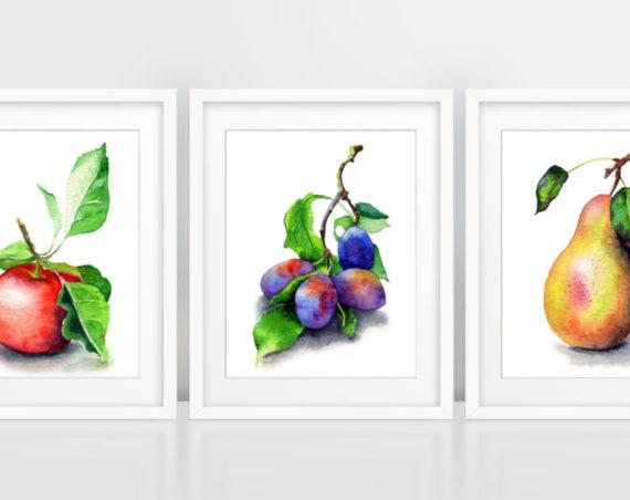 Fruit Wall Art Print, Botanical Set of 3 Prints, Apple Plums Pear poster set, garden gift, home decor, kitchen art