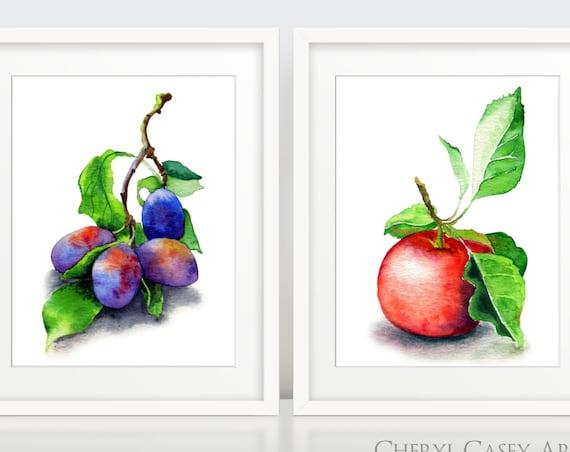 Fruit Wall Art Print, Botanical Set of 2 Prints, Apple Plums poster set, garden gift, home decor, kitchen art
