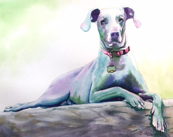 Custom Dog Portrait Watercolor Painting from Your Photo, Colorful Dog Cat Animal Painting, Weimaraner Art or any breed
