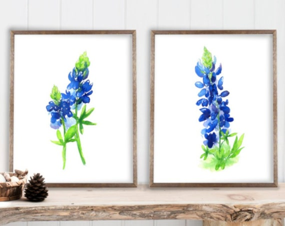 Bluebonnet Art Print, Set of 2, Watercolor Bluebonnet Painting, minimalist blue flowers