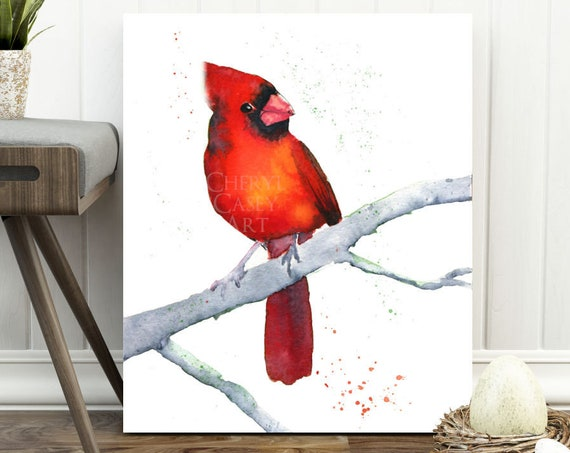 Cardinal Print, Redbird on a Limb, Watercolor Painting Print by Cheryl Casey