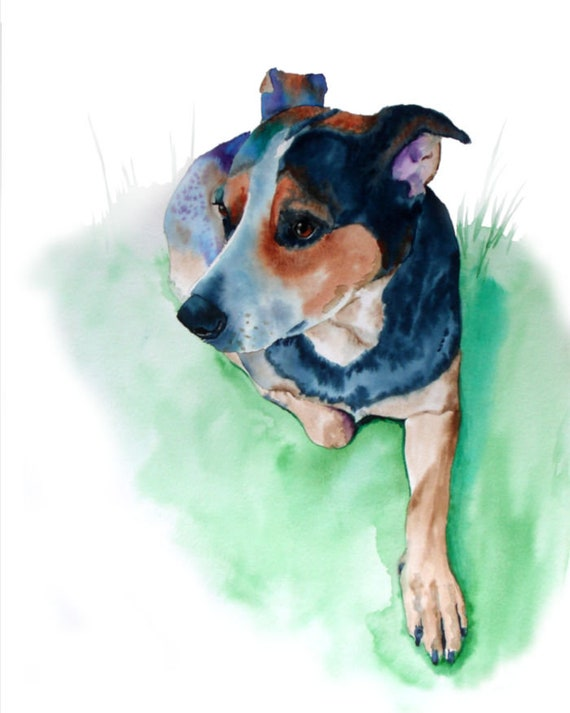 Blue Heeler Dog Art Print, Watercolor Painting by Cheryl Casey, animal breed pet painting portrait