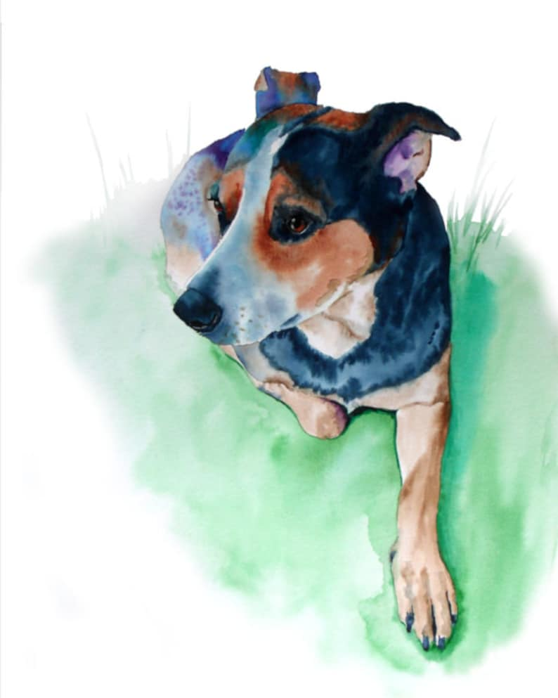 Blue Heeler Dog Art Print Watercolor Painting by Cheryl image 0