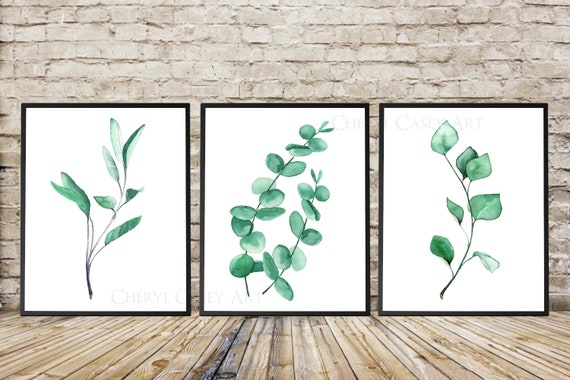Eucalyptus Print Set of 3, Watercolor Paintings by Cheryl Casey, Sage Ivy Green Teal Silver Dollar Eucalyptus Minimalist Modern Art