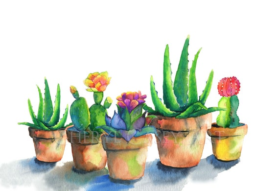 Succulents and Cactus Watercolor Print by Cheryl Casey