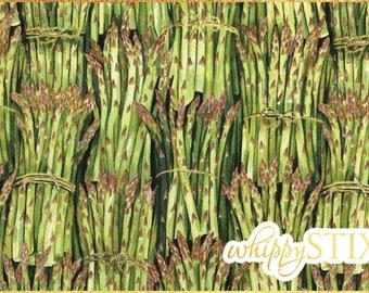 Cook asparagus vegetables food kitchen Makower fabric