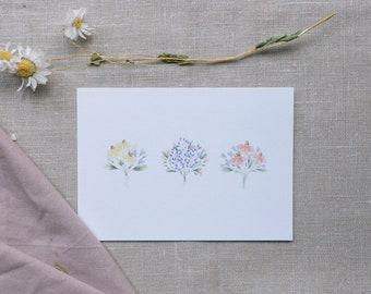 Postcard bouquet, greeting card bouquets