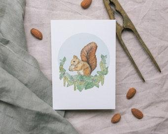 Squirrel Postcard, Greeting Card